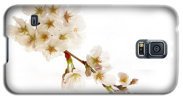 Galaxy S5 Case featuring the photograph first blossoms on the Basin by Edward Kreis