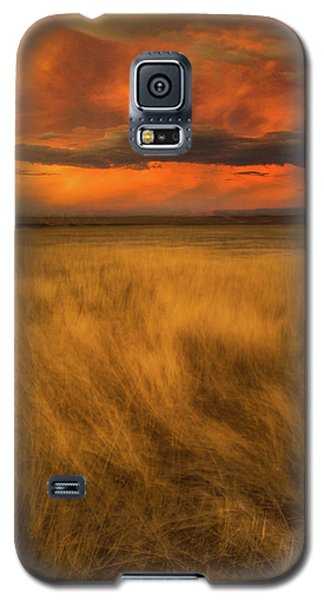 First Encounter 2 Galaxy S5 Case