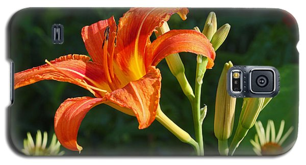 First Flower On This Lily Plant Galaxy S5 Case by Steve Augustin