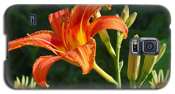 First Flower On This Lily Plant Galaxy S5 Case