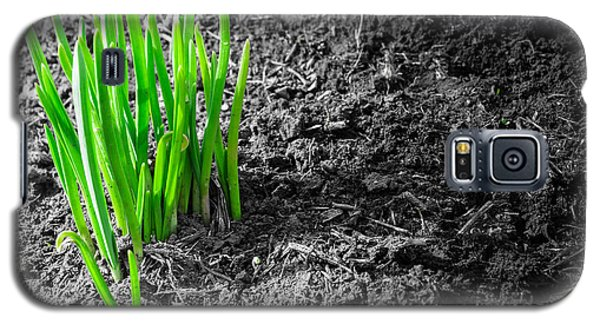 First Green Shoots Of Spring And Dirt Galaxy S5 Case by John Williams