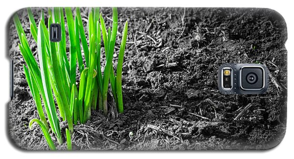 First Green Shoots Of Spring And Dirt Galaxy S5 Case