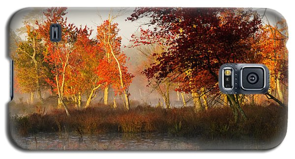 First Light At The Pine Barrens Galaxy S5 Case