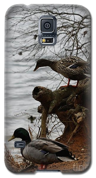 Galaxy S5 Case featuring the photograph First One In by Kim Henderson