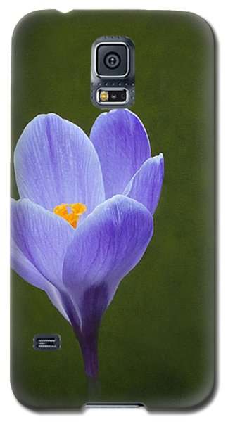First Sign Of Spring Galaxy S5 Case