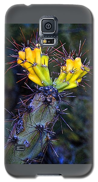 First Signs Of Spring On The Sonoran Desert Galaxy S5 Case