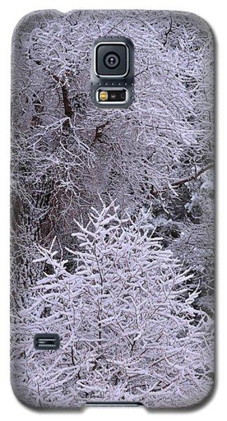 First Snow I Galaxy S5 Case