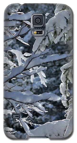 First Snow II Galaxy S5 Case