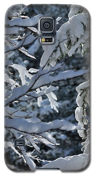 First Snow II Galaxy S5 Case