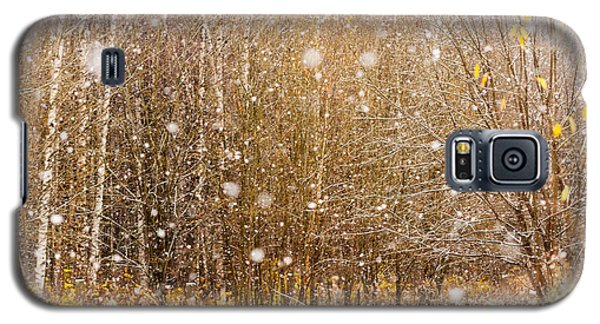 First Snow. Snow Flakes I Galaxy S5 Case by Jenny Rainbow