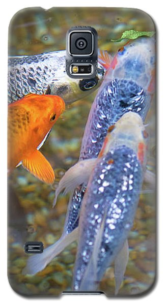 Fish Fighting For Food Galaxy S5 Case