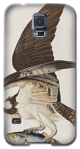 Osprey Galaxy S5 Case - Fish Hawk Or Osprey by John James Audubon