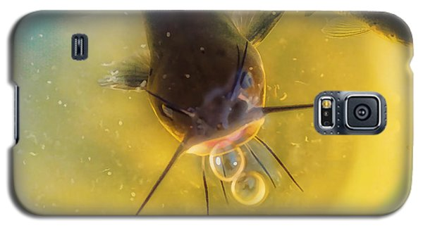 Catfish Galaxy S5 Case - Fish In A Barrell by Susan Capuano