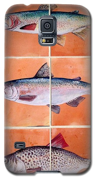 Fish Mural Galaxy S5 Case by Andrew Drozdowicz