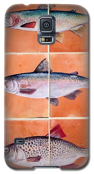Galaxy S5 Case featuring the ceramic art Fish Mural by Andrew Drozdowicz