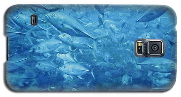 Fish Schooling Harmonious Patterns Throughout The Sea Galaxy S5 Case