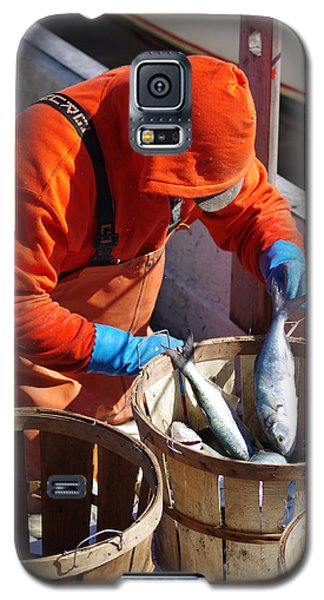 Fisherman Sorting His Catch Galaxy S5 Case