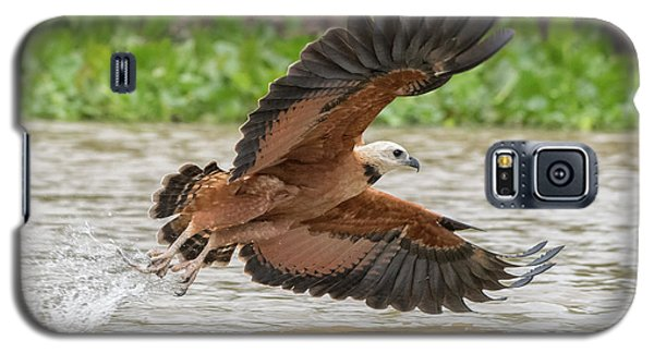 Galaxy S5 Case featuring the photograph Fishing Hawk by Wade Aiken