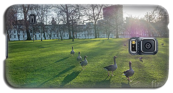 Five Ducks Walking In Line At Sunset With London Museum In The B Galaxy S5 Case