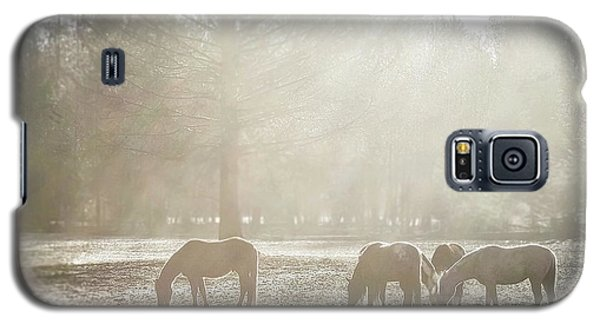 Five Horses In The Mist Galaxy S5 Case