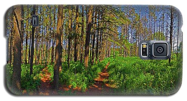Paths, Pines 360 Galaxy S5 Case