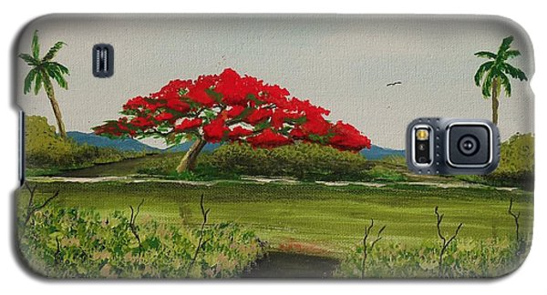 Flamboyan A La Orilla Del Rio Galaxy S5 Case by Edwin Alverio
