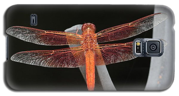 Flame Skimmer Galaxy S5 Case