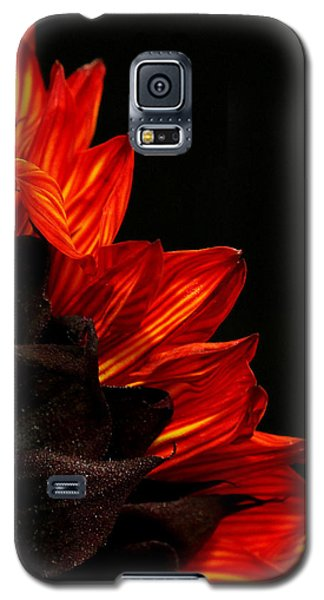 Galaxy S5 Case featuring the photograph Flames by Judy Vincent
