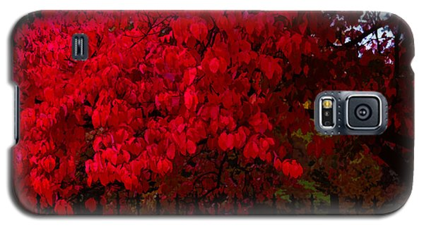 Flames Of Autumn Galaxy S5 Case
