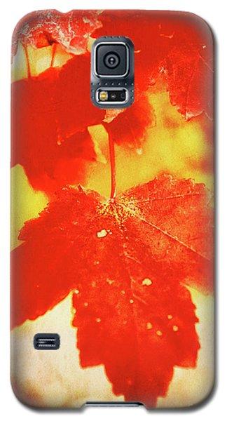Flaming Autumn Galaxy S5 Case