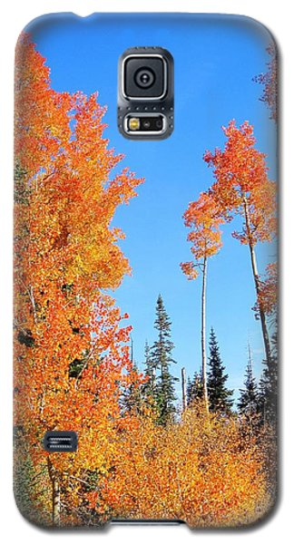 Flaming Autumn Trees In Dixie National Forest Utah Galaxy S5 Case