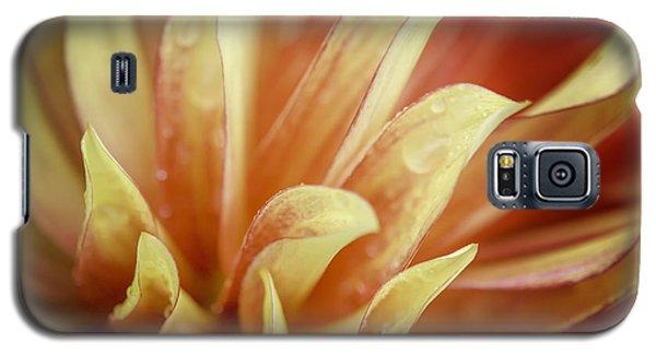 Flaming Dahlia Galaxy S5 Case