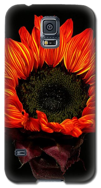 Galaxy S5 Case featuring the photograph Flaming Flower by Judy Vincent