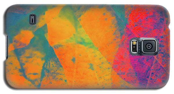 Galaxy S5 Case featuring the photograph Flaming Foliage 1 by Ari Salmela