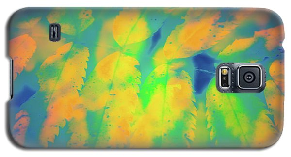 Galaxy S5 Case featuring the photograph Flaming Foliage 2 by Ari Salmela