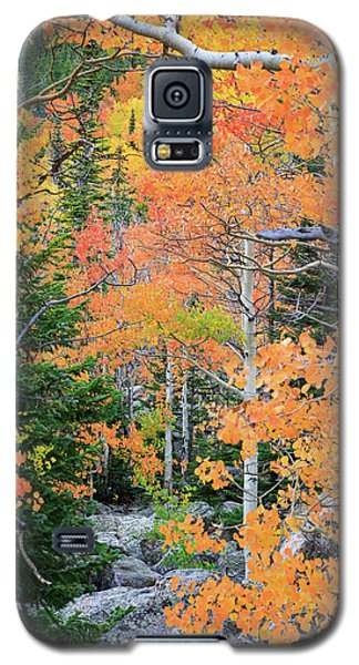 Galaxy S5 Case featuring the photograph Flaming Forest by David Chandler