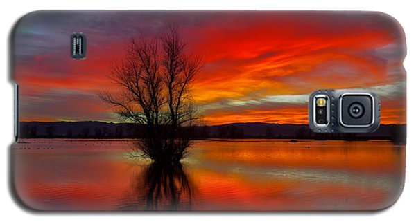 Flaming Reflections Galaxy S5 Case