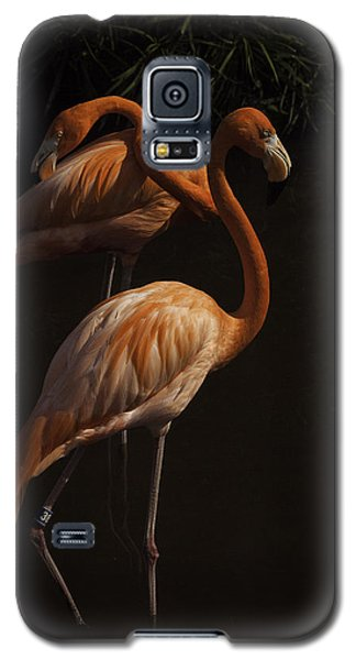 Galaxy S5 Case featuring the photograph Flamingo Delight by Rob Wilson