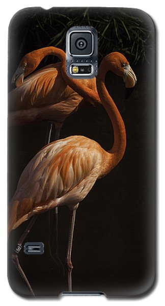 Flamingo Delight Galaxy S5 Case by Rob Wilson