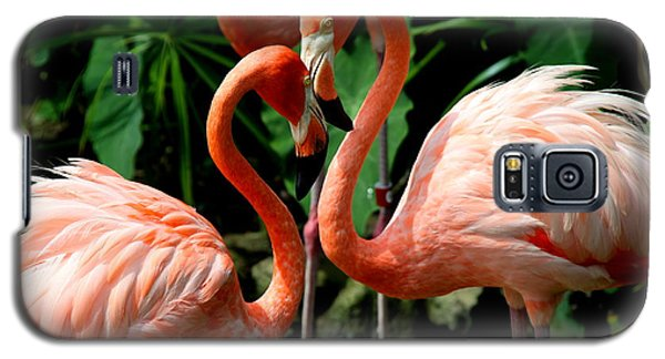 Flamingo Heart Galaxy S5 Case