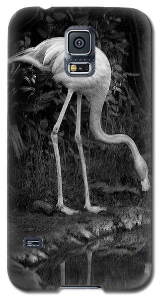 Flamingo Lake, Film Finish Galaxy S5 Case