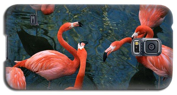 Flamingo Party 1 Galaxy S5 Case