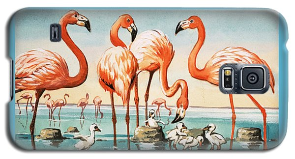 Flamingoes Galaxy S5 Case