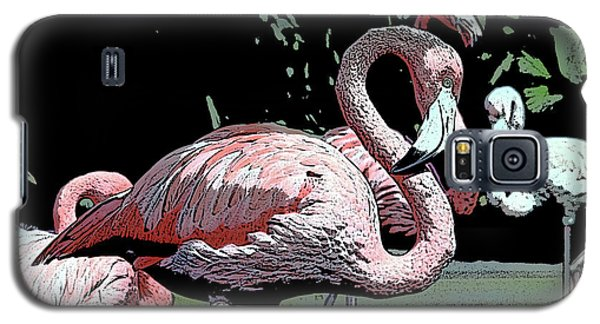 Galaxy S5 Case featuring the photograph Flamingos I by Jim and Emily Bush