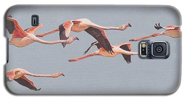Flamingos In Flight Galaxy S5 Case