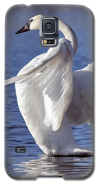 Flapping Swan Galaxy S5 Case