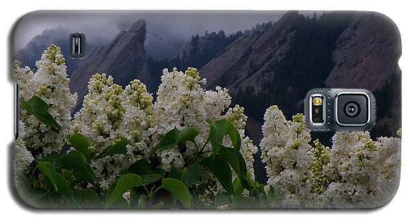 Flatirons White Lilacs Galaxy S5 Case
