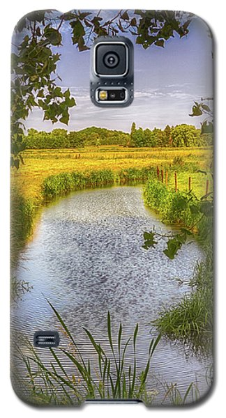 Flemish Creek Galaxy S5 Case