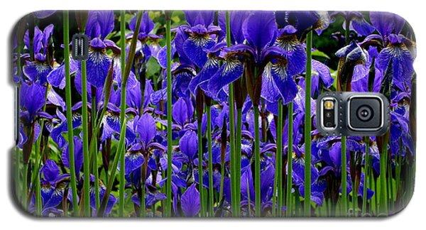 Fleur De Lys Galaxy S5 Case by Elfriede Fulda
