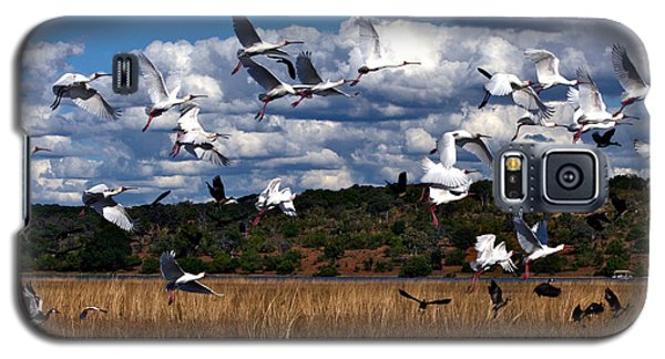 Flight Galaxy S5 Case
